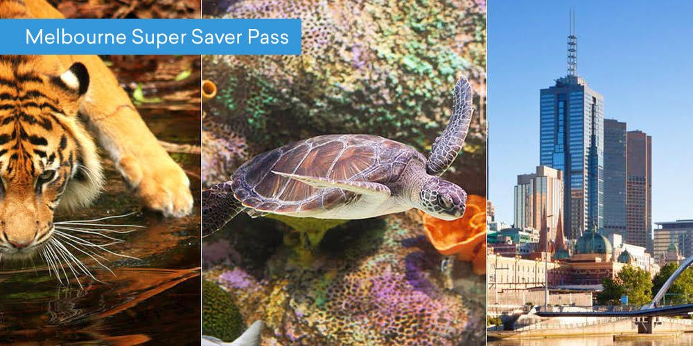 Melbourne Super Saver Pass
