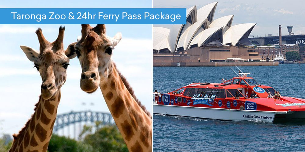 Taronga Zoo & 24hr Ferry Pass Package