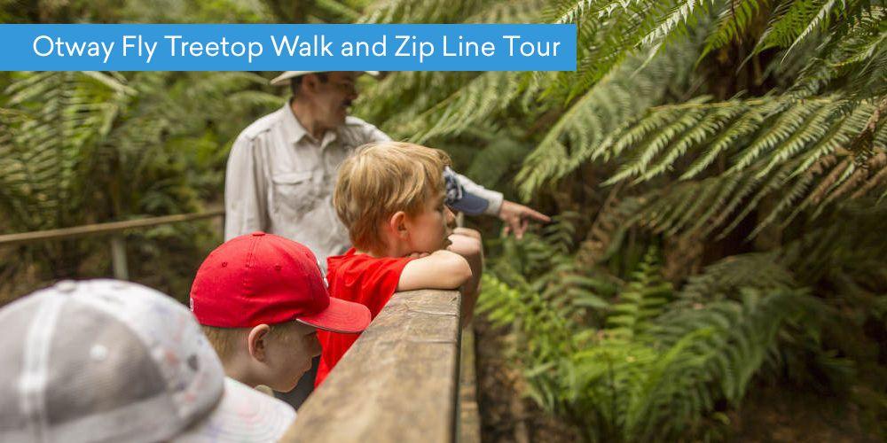Otway Fly Treetop Walk and Zip Line Tour