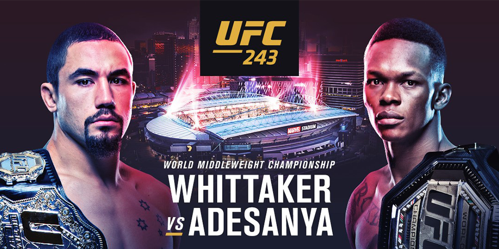 Ultimate Fighting Championship 245