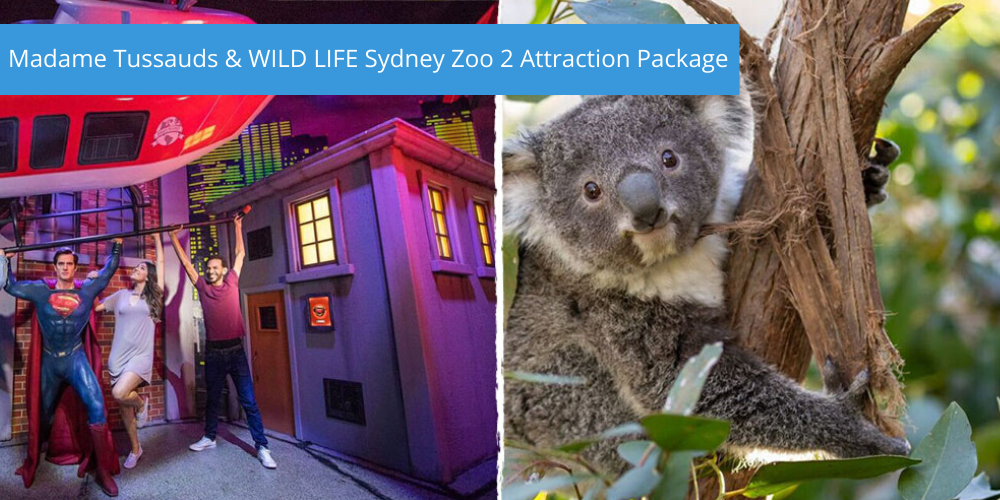 Madame Tussauds & WILD LIFE Sydney Zoo 2 Attraction Package